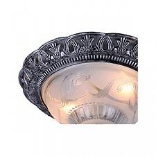 Накладной светильник Arte Lamp A8001PL-2SB Piatti