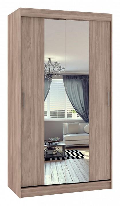 Купить Шкаф-Купе Риф-2 Зеркало Вариант 4