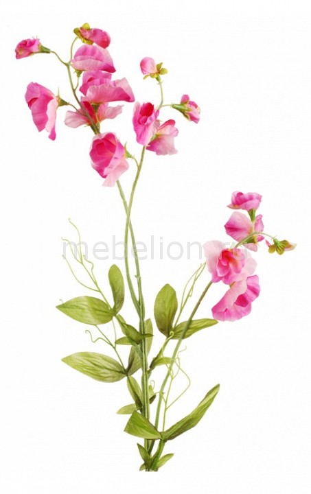 Цветок (72 см) Петунья 22001200