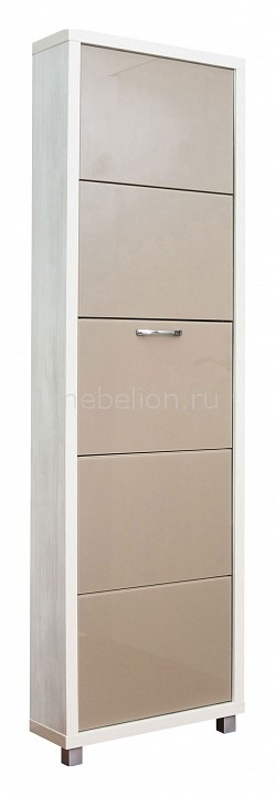 Шкаф для обуви Айрон Люкс 5с
