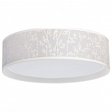 Накладной светильник MW-Light Ривз 674016101
