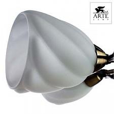 Потолочная люстра Arte Lamp A6253PL-5BA Swirls