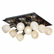 Накладной светильник Lussole LSX-5507-09 Senigallia