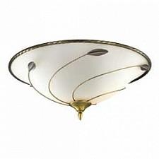 Накладной светильник Sonex 4213 Barzo