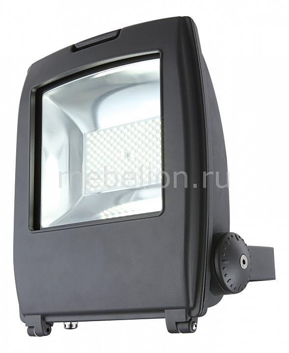 Настенный прожектор Globo Projecteur I 34221 настенный прожектор globo projecteur i 34221