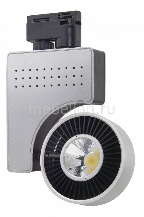 Светильник на штанге Horoz Electric HL834L 018-001-0040 Серебро