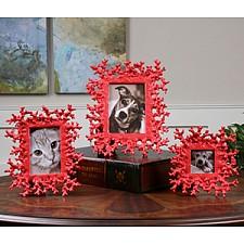 Набор из 3 фоторамок настольных Red Coral 18559