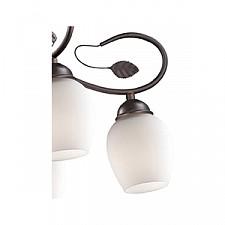 Подвесная люстра Odeon Light 2500/6 Belana