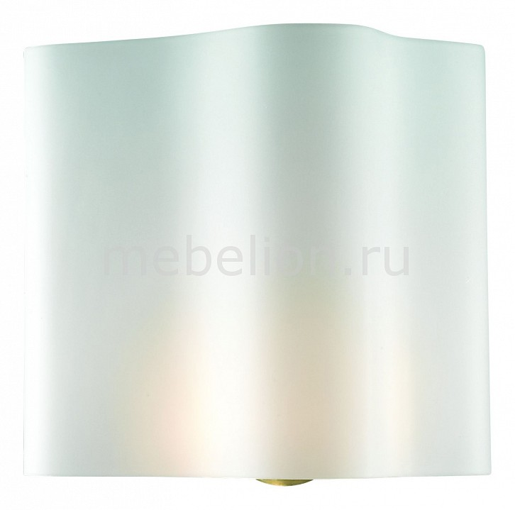 Накладной светильник ST-Luce SL116.511.01 Onde