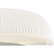 Накладной светильник Lightstar 762656 Retro