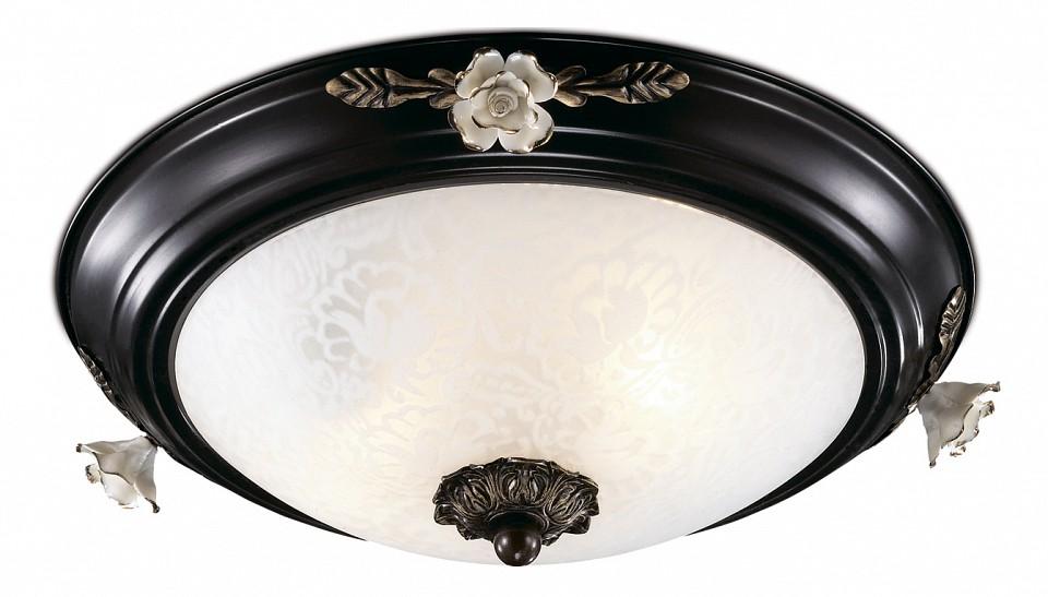 Накладной светильник Odeon Light 2693/2C Bone