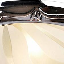 Накладной светильник Arte Lamp A3008PL-2CC Alta