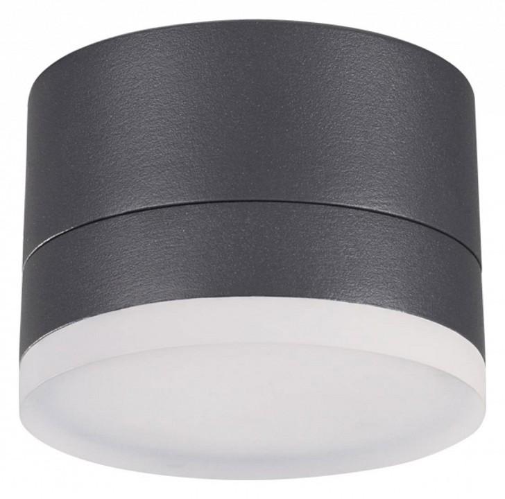 где купить Накладной светильник Novotech Kaimas 358084 дешево