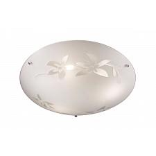 Накладной светильник Sonex 3214 Romana