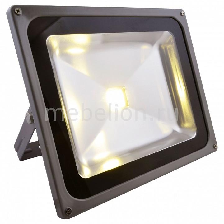 Настенный прожектор Arte Lamp