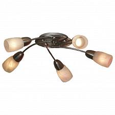 Потолочная люстра Cevedale LSQ-6907-05