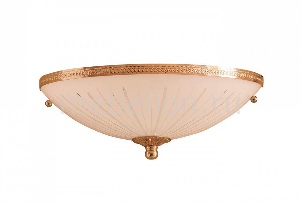 Накладной светильник Citilux CL912301