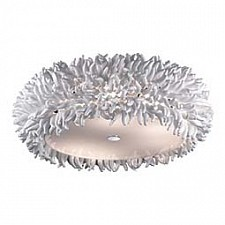 Накладной светильник Esma 2755/6C