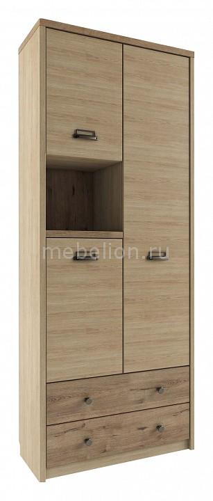 Шкаф комбинированный Diesel 3D2SN/D1
