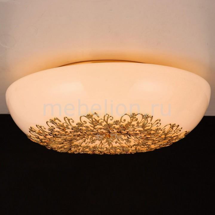 Накладной светильник Citilux CL254262 Торо