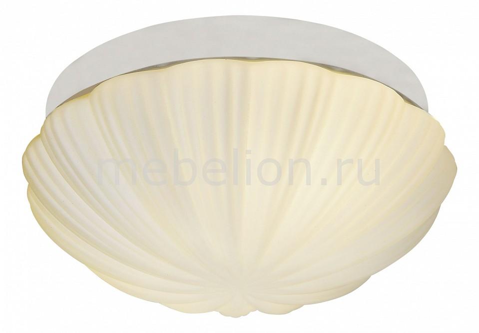Накладной светильник ST-Luce SL495.502.02 Bagno
