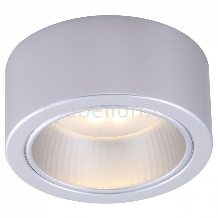 Накладной светильник Arte Lamp A5553PL-1GY Effetto