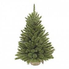 Ель новогодняя Triumph Tree (60 см) Лесная красавица 73668