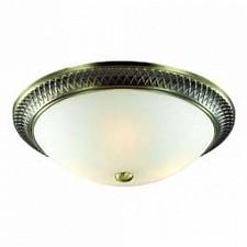 Накладной светильник Praim 4304