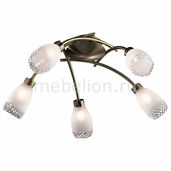 Потолочная люстра Odeon Light 1803/5C Lerta