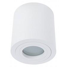 Накладной светильник Divinare 1460/03 PL-1 Galopin