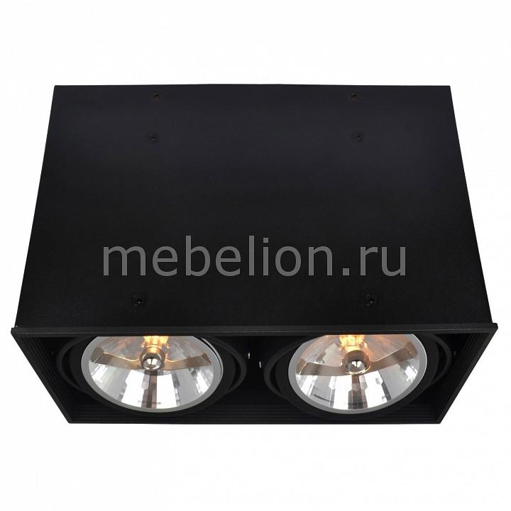Накладной светильник Arte Lamp A5936PL-2BK Cardani