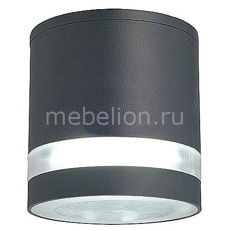 Накладной светильник Favourite Flicker 1830-1U