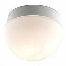Накладной светильник Minkar 2443/1B