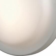 Накладной светильник Odeon Light 2760/3C Tavoy
