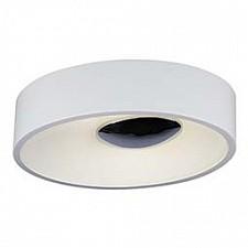 Накладной светильник ST-Luce SL889.502.02 Pulsante