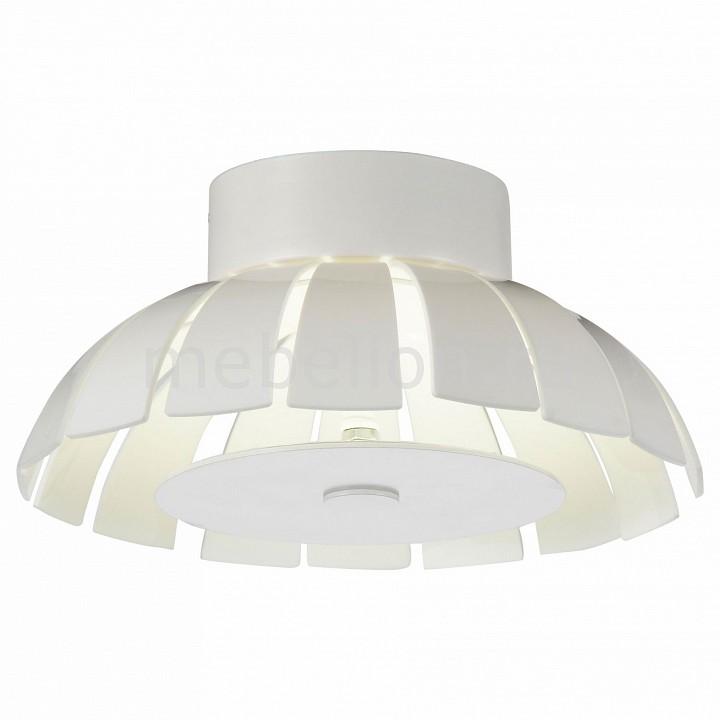 Накладной светильник ST-Luce SL559.503.01 SL559