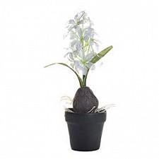 Растение в горшке Garda Decor (35 см) Гиацинт с луковицей 8J-10LK0038