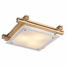 Накладной светильник Arte Lamp A6460PL-3BR Archimede
