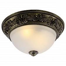 Накладной светильник Arte Lamp A8010PL-2AB Piatti