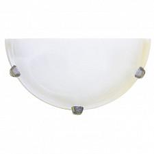 Накладной светильник Arte Lamp A3431AP-1CC Luna