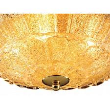 Накладной светильник Lightstar 820232 Zucche