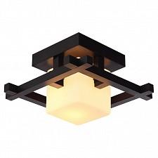 Накладной светильник Arte Lamp A8252PL-1CK Woods