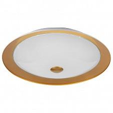 Накладной светильник Euler CL815-PT50-G