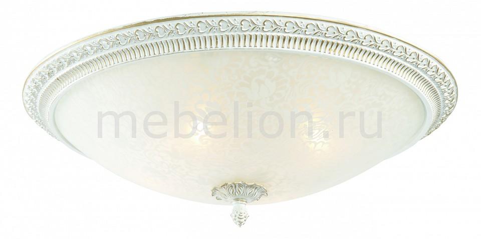 Накладной светильник ST-Luce SL135.502.04 Fascino