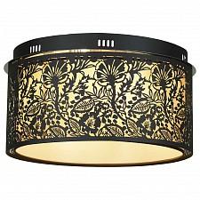 Накладной светильник Vetere LSF-2377-07