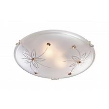 Накладной светильник Floret 349