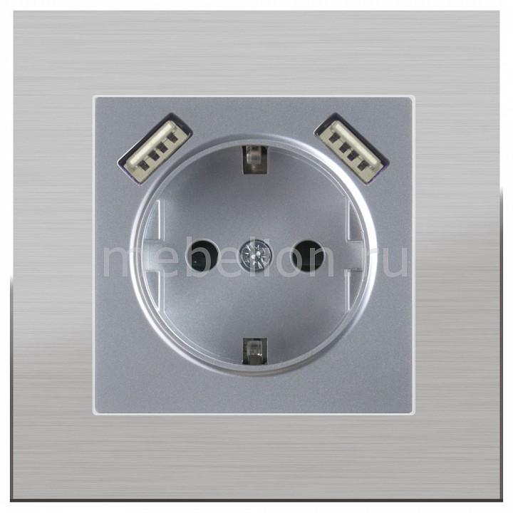Розетка с заземлением, шторками и 2хUSB, без рамки Aluminium(Серебряный) WL06-SKGS-01-IP44+WL06-SKGS-USBx2-IP20