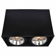 Накладной светильник Cardani A5936PL-2BK