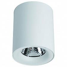 Накладной светильник Arte Lamp A5118PL-1WH Facile
