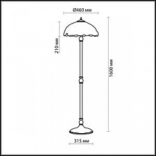 Торшер Odeon Light 2525/2F Garden